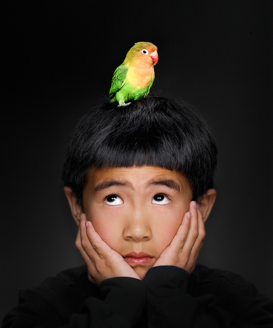Portrait of a child with his parrot resting on his head, photographed by Benoit Malphettes in his Pasadena Studio .